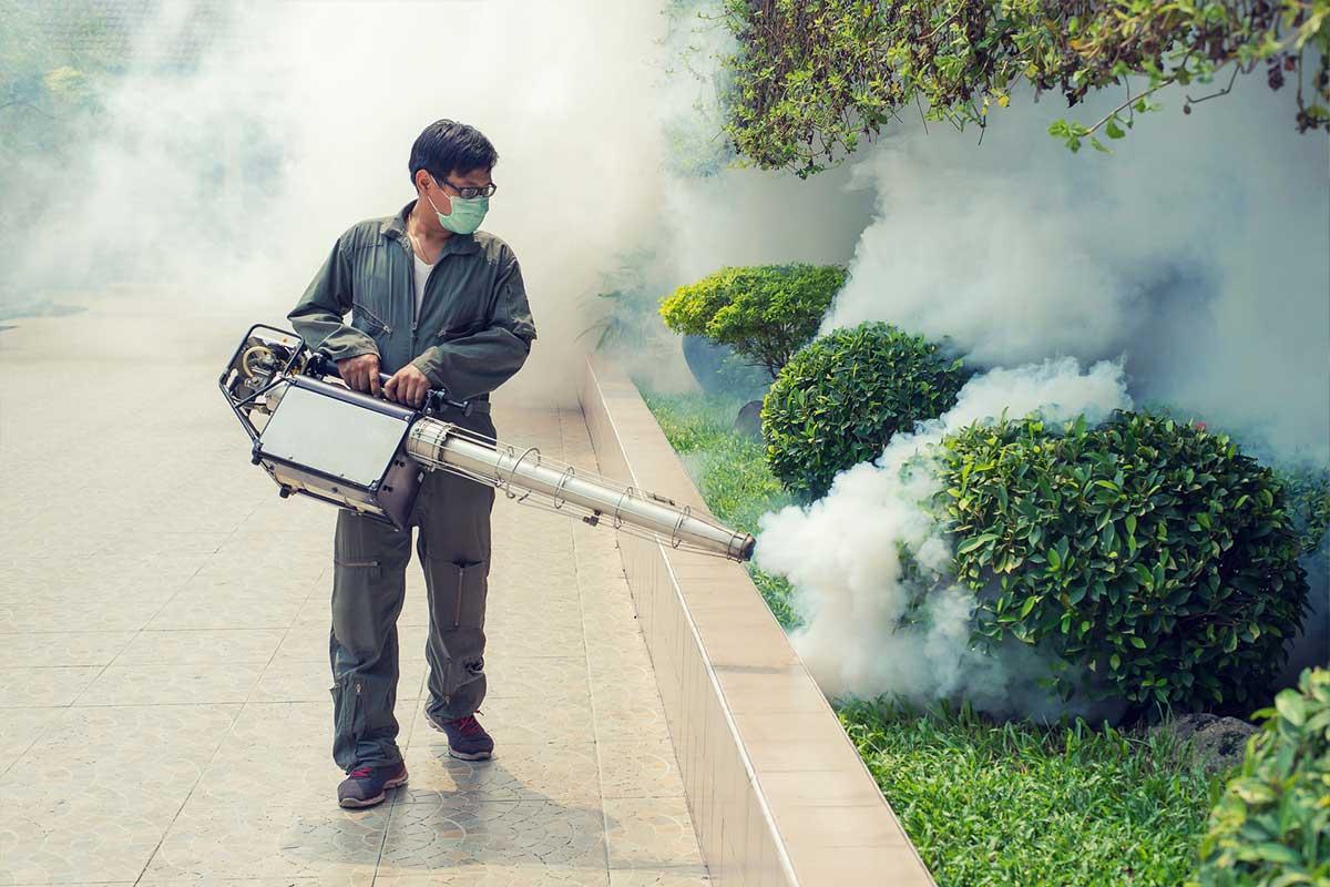The Top 10 Pest Control Companies in Singapore – The Pest Guru